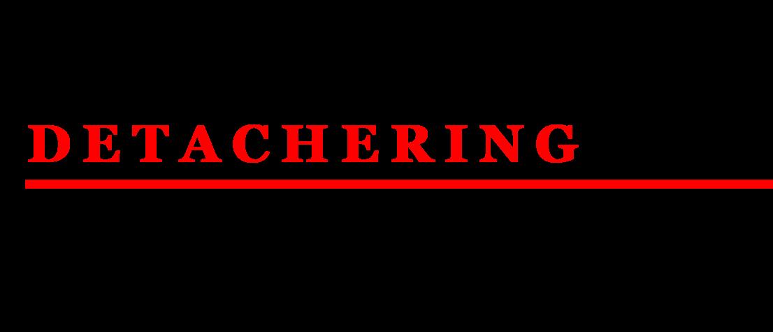 Van Kalmthout Detachering